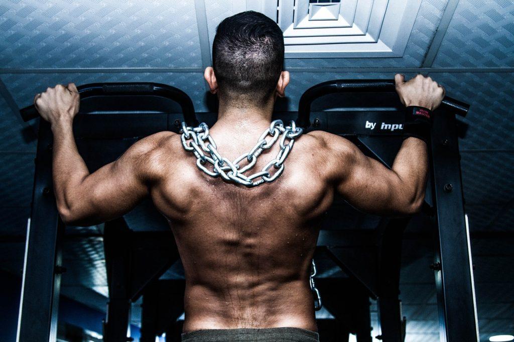 aumentar masa muscular dieta